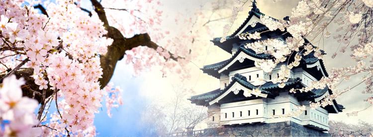 HANEDA - HAKONE - TOKYO - FUJI 5N5Đ