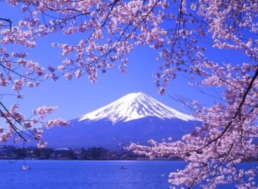 TOKYO-NÚI PHÚ SĨ-KDL HAKONE-ĐẢO ODAIBA-LÀNG VĂN HÓA OSHINO HAKKAI